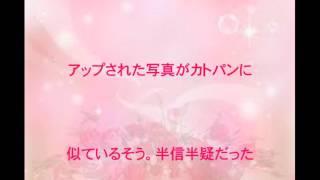 餅田コシヒカリ,カトパン似,体重88キロ,女芸人,話題,動画 餅田コシヒカリ 検索動画 16
