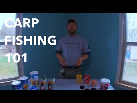 WELCOME TO THE WONDERFUL WORLD OF CARP FISHING!