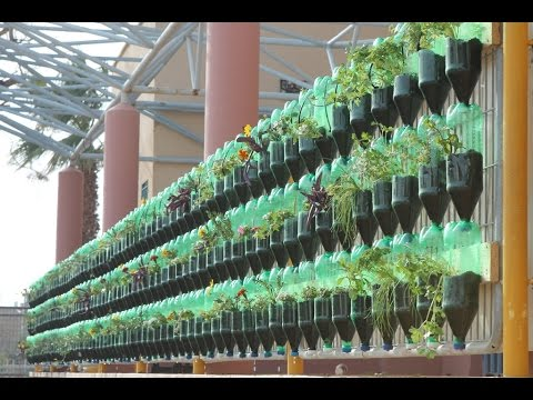 the green wall educational vertical garden bottle system project - Wall Garden