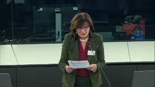 Intervento in aula di Patrizia Toia sull'Europa sociale in un mondo digitale