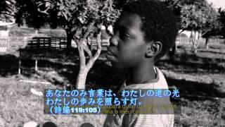 日本聖書協会(新共同訳)