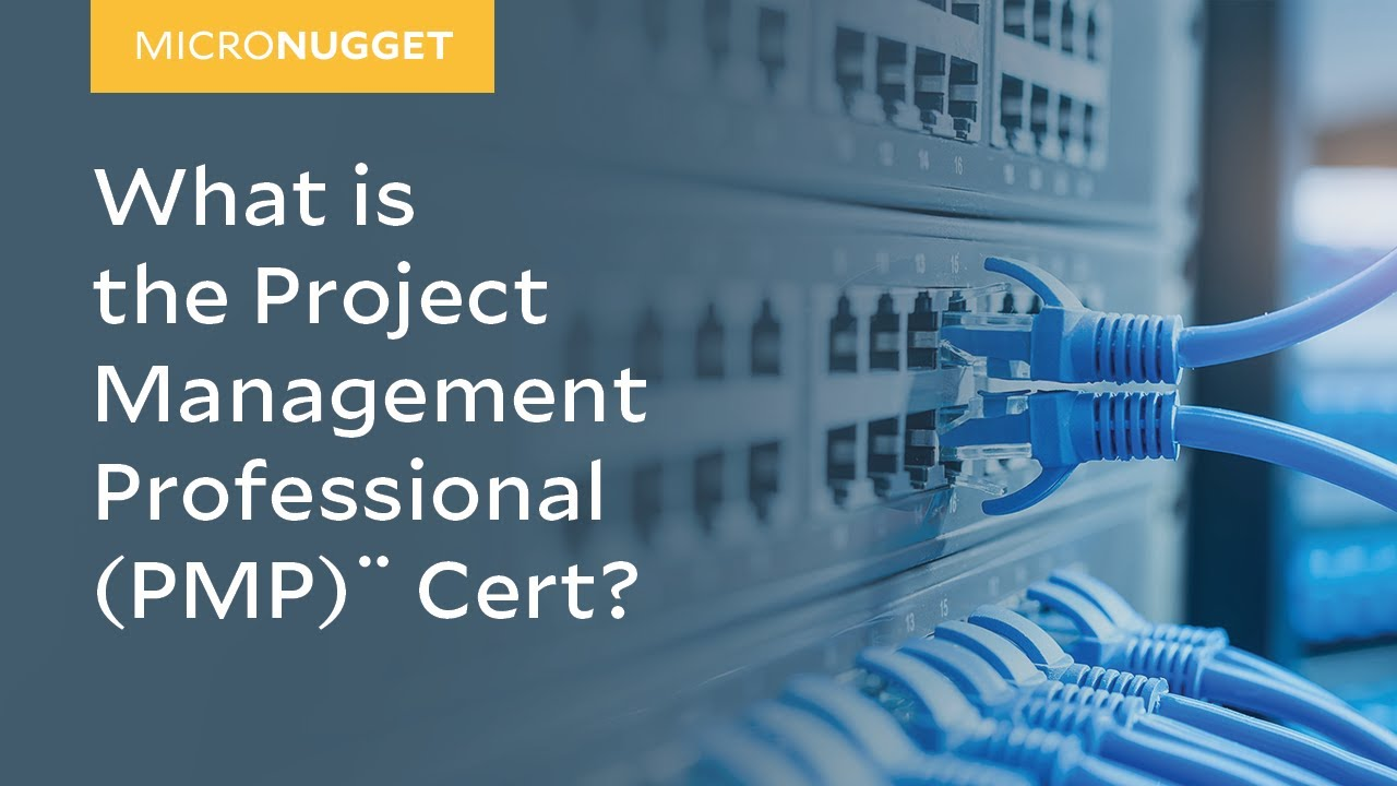 Micronugget What Is The Project Management Professional Pmp Cert