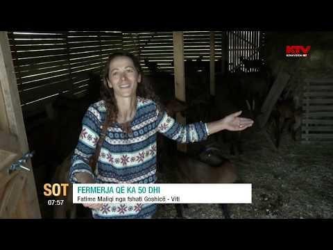 SOT -  Fermerja që ka 50 dhi,  07 09 2016