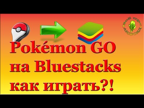 Как играть в Покемон Го в Bluestacks