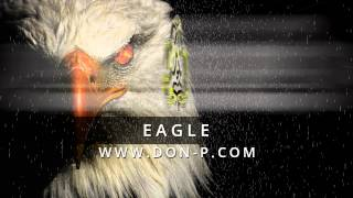 DON P - Eagle instrumental (Rap hiphop beat, bass, 808, nice melody, Gucci Mane, Waka Flocka, Keef)