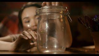 Смотреть клип The Limba - Синие Фиалки
