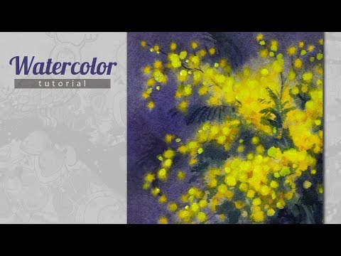 How to Draw a Acacia Dealbata (Mimosa in Russia) Watercolor. Tutorial.