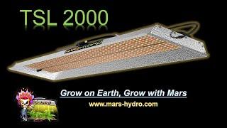 Mars Hydro TSL 2000 LED grow light case study