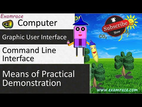 Graphic User Interface and Command Line Interface: Fundamentals of Computers