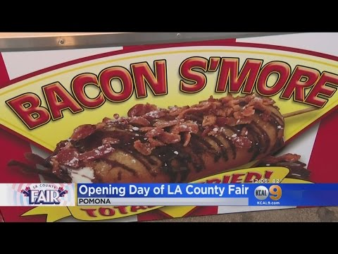 Fried Food, Farm Animals And Fun Abound At LA County Fair