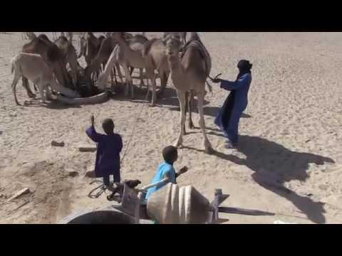 The tuareg life