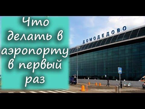 Что делать в аэропорту в первый раз: регистрация на рейс, досмотр, паспортный и таможенный контроль