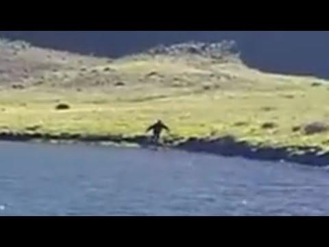 Bigfoot footage from Wildhorse lake, Breakdown,