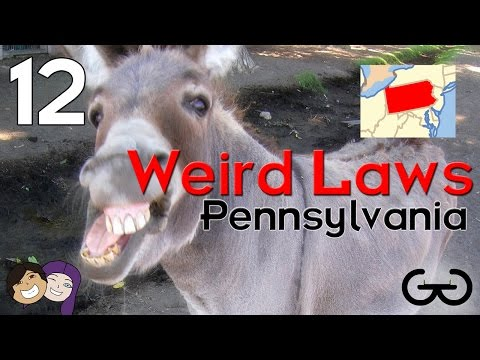 Hard Crimes - 12 Weird Laws From PA - Weird Laws Ep 2