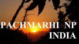 Video India Beautiful Pachmarhi (Satpura) National Park Part 28 (HD) download MP3, 3GP, MP4, WEBM, AVI, FLV Juli 2018