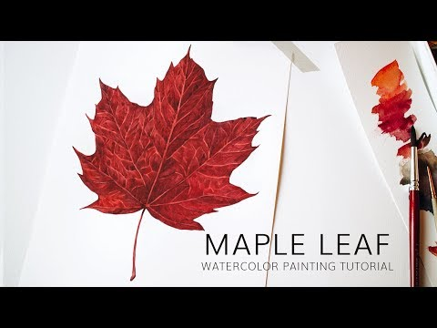 Red Autumn Leaf Botanical Illustration Tutorial · Painting realistic maple leaf in watercolor