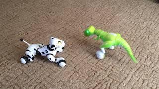 Zoomer Dino vs Zoomer Dog