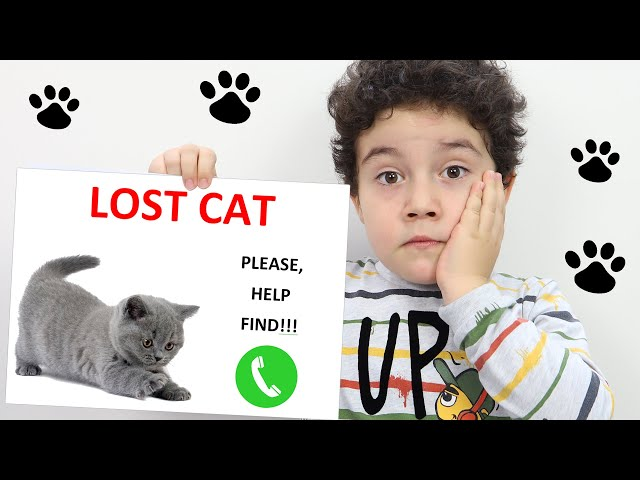 Yusuf and Uncle Lost the Cat