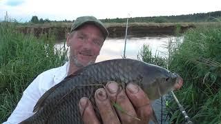 Июньский карп реки Свислочь Рыбалка в Беларуси