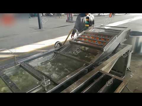 Automatic Bubble Type Fruit Vegetable Washing Machine|Seafood Fish Cleaner Equipment