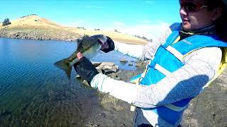 Epic Top Water Fishing at Millerton Lake