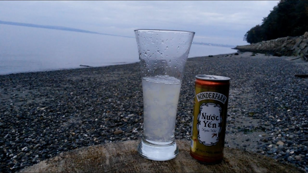 Image result for White Fungus Bird's Nest Drink