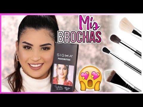 Mi Kit De Brochas Basicas Para Maquillaje  I Roccibella