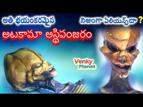 Real Mystery about Atacama Alien Skeleton is actual Extraterrestrial being by Planet Telugu