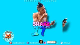 Najee - Shake It [Audio Visualizer]