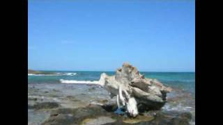 Ostuni Bandiera Blu 2012-Le più belle spiagge tra Ostuni e Carovigno (Br) Puglia