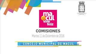Comisiones - Concejo Municipal de Macul N° 90 / 11-12-2018