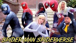 SPIDER-MAN, SPIDER- VERSE, SPIDER-GWEN VS Anime Weekend Atlanta 2016 - Real Life Super Hero Movie