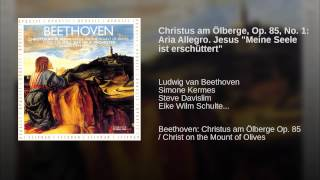 """Christus am Ölberge, Op. 85, No. 1: Aria Allegro. Jesus """"Meine Seele ist erschüttert"""""""