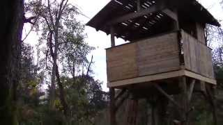 PALLET TREE HOUSE Made from FREE PALLETS building with pallets