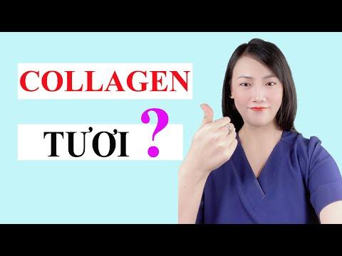 [Hỏi Đáp] Collagen Tươi Là Gì ? Công Dụng Như Thế Nào ? Hoa Beauty