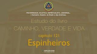 Estudo do livro CAMINHO, VERDADE e VIDA - Cap. 121 Espinheiros