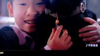[関連キーワード] 平原綾香 マスカット 平原綾香 Love 平原綾香 アリア ...