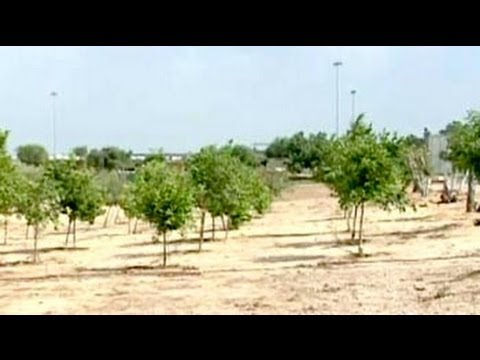 Green revolution in deserts of Israel