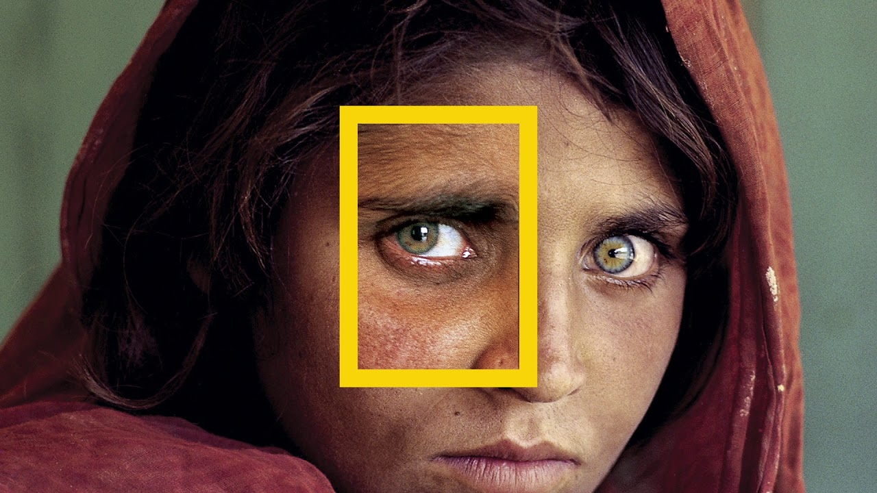 MediaLover 2018 - National Geographic MyTub