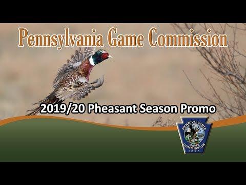 2019/20 Pheasant Season Promo