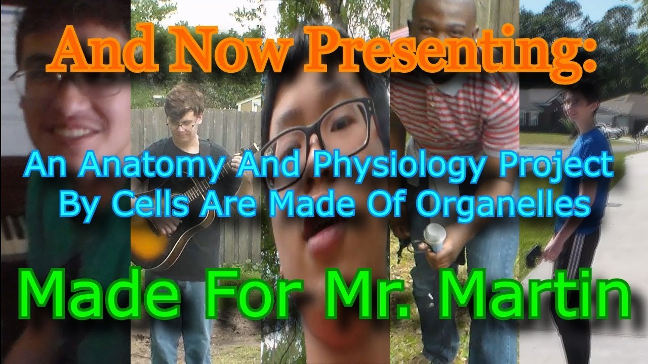 Anatomy And Physiology Final Project - YouTube