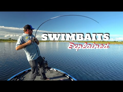 Types of Swimbaits - What you need to know (Surprise Catch)