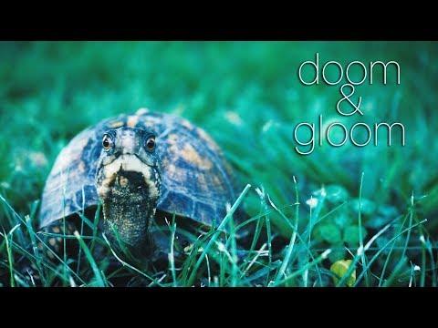 Oribi - Doom & Gloom