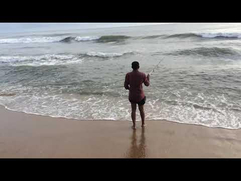 Fishing at munambam beach |കൂരി