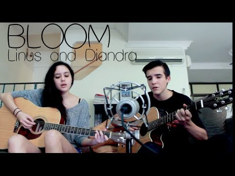 Bloom (The Paper Kites) - Linus And Diandra