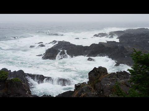 Sonido de Lluvia y Olas del Mar para Dormir y Relajarse - Meditación