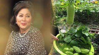 Nghệ sĩ Hồng Vân: Cận cảnh VƯỜN RAU SẠCH và HOA TƯƠI tiền tỷ giữa lòng Sài Gòn!