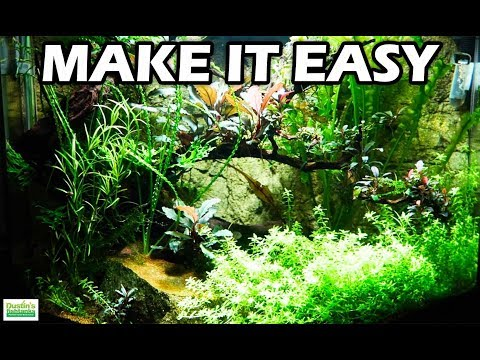 TOP 5 Ways To Make Your PLANTED AQUARIUM EASIER