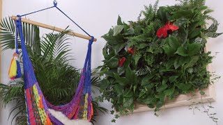 How to Make a DIY Indoor Living Plant Wall | Eye on Design