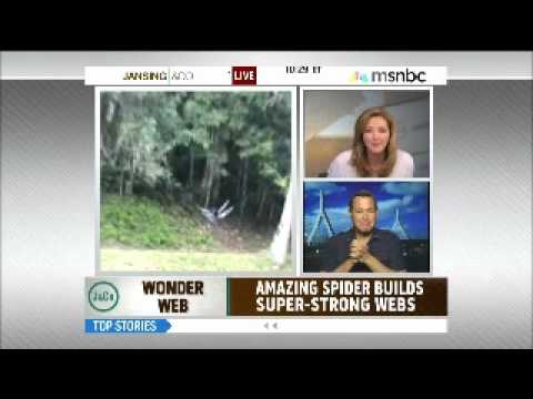 Chris Jansing freaks over some breaking spider news